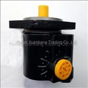 C4930793 Dongfeng Cummins Engine Part/Auto Part/Spare Part Vane Pump /Power Steering Pump