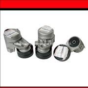 D5010550335 D5010412957 D5010412956 Renault engine belt tensioner