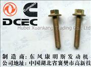 Q1840630 C3936685  Dongfeng Cummins Engine Part/Auto Part Oil Suction Pipe Screw