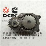 Dongfeng Cummins Engine Part/4BT Oil Pump assembly C4939585