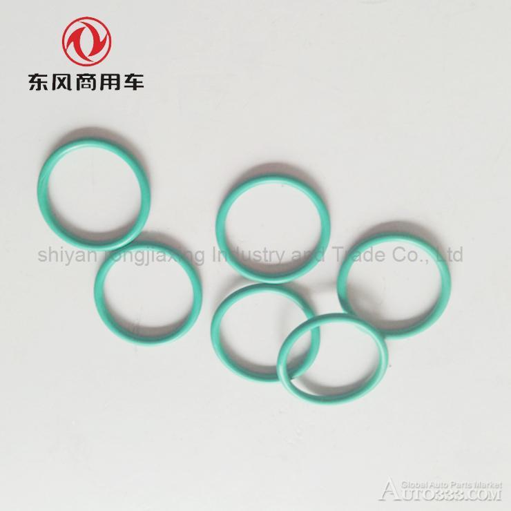 Dongfeng Tianlong Hercules Renault engine injector casing sealing ring 5003065045