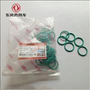 NDongfeng Tianlong Hercules Renault engine injector casing sealing ring 5003065045